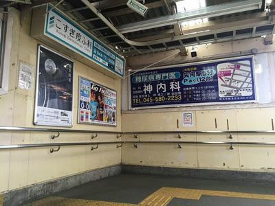 201508_hirama_2.jpg
